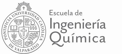 Logo EIQ Gris Transparente PNG